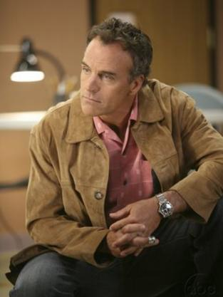 Richard Burgi as Karl Mayer