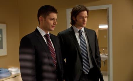 Siblings in a Suit