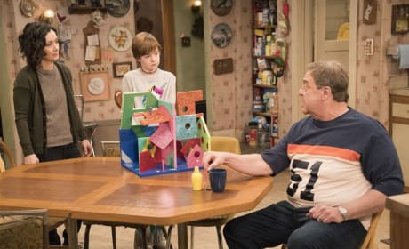 The Bird House - Roseanne Season 10 Episode 6
