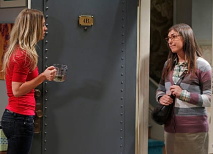 Watch The Big Bang Theory Season 5 Episode 1 Online