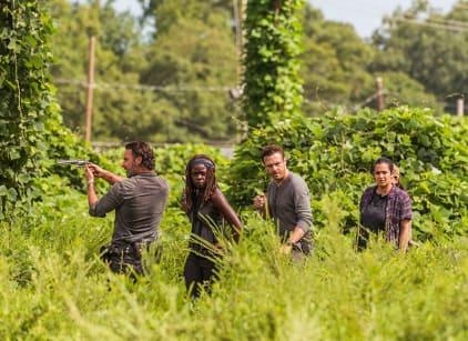 Watch The Walking Dead Season 7 Episode 9 Online