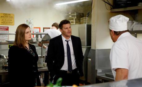 Investigating the Kitchen - Bones