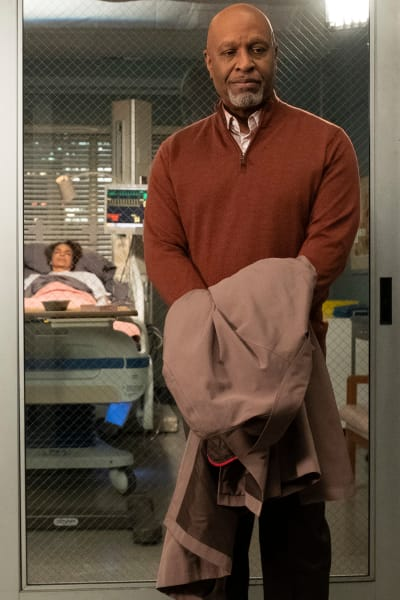 Honoring Ollie  - Grey's Anatomy Season 15 Episode 22