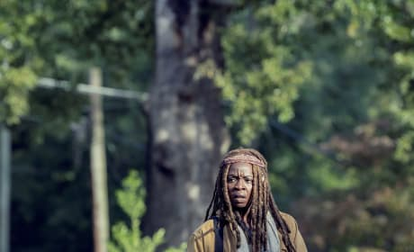 A Threat At Every Turn - The Walking Dead Season 9 Episode 14