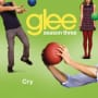 Glee cast cry
