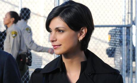 Morena Baccarin as Erika Flynn - The Mentalist