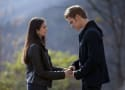 The Vampire Diaries Stunner: Nina Dobrev and Paul Wesley 'Despised Each Other'
