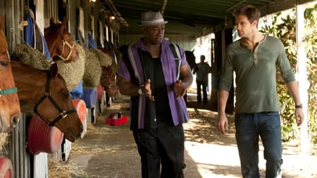 Leo & Walter Investigate At the Stables