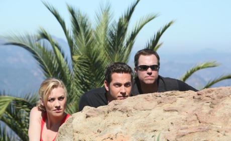 The Chuck Trio