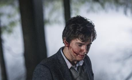 The End - Bates Motel