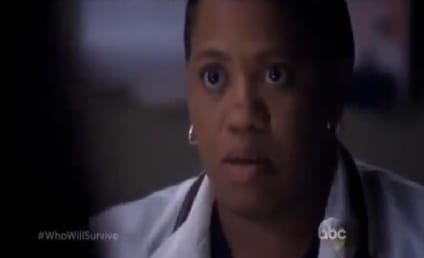 Grey's Anatomy Season 10 Trailer: Who Will Survive?