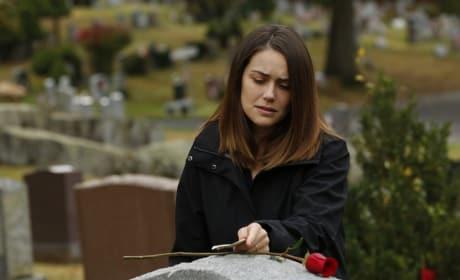 A Single Rose - The Blacklist Season 5 Episode 9