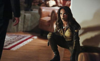 Legends of Tomorrow Season 2: Vixen Jumping Aboard the Waverider!