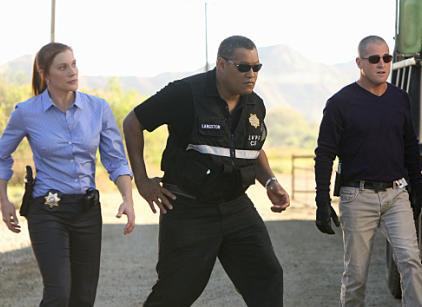 Watch CSI Season 11 Episode 8 Online