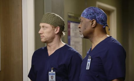 Pair of Doctors - Grey's Anatomy Season 11 Episode 14