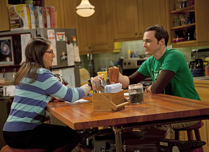 Watch The Big Bang Theory Season 4 Episode 20 Online