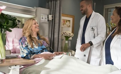 Grey's Anatomy Season 14 Episode 16 Review: Caught Somewhere in Time