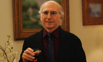 Curb Your Enthusiasm Season 9: Confirmed!