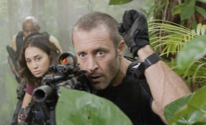 Watch Hawaii Five-0 Online: Season 8 Episode 15