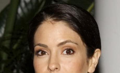 Lisa LoCicero Picture