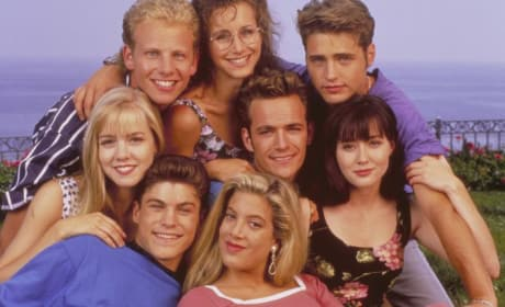 Beverly Hills 90210 Cast: Where Are They Now?