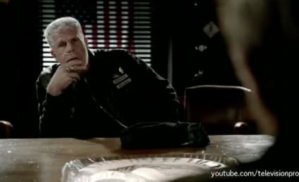 Sons of Anarchy Season 5 Preview: What's the Play?