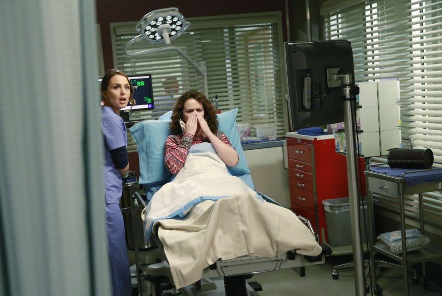 Grey\'s Anatomy: Watch Season 11 Episode 17 Online - TV Fanatic