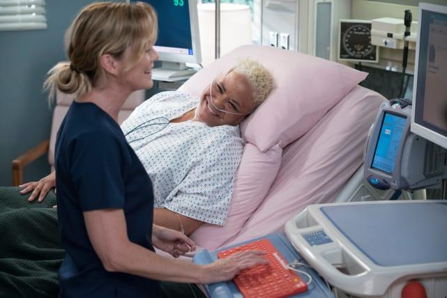 Everyone Loves Meredith - Grey's Anatomy Season 15 Episode 1