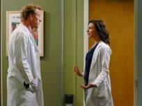 Grey's Anatomy Season 11 Episode 20