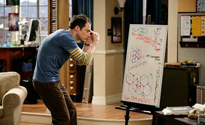 """The Big Bang Theory Review: """"The Einstein Approximation"""""""