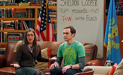 The Big Bang Theory Review: The Siri Love Connection