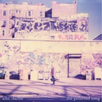 The Polaroid Song