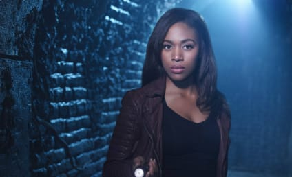 Nicole Beharie Says She Was Blacklisted After Sleepy Hollow Exit: 'I Lost Out On A Lot Of Jobs'