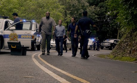 On the Road  - Hawaii Five-0 Season 5 Episode 25