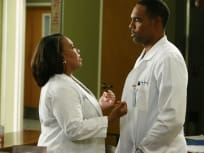 Grey's Anatomy Season 12 Episode 14