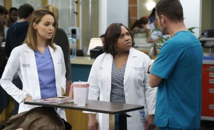 Grey's Anatomy Season 13 Episode 6 Review: Roar
