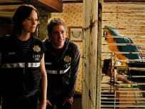 CSI Season 11 Episode 9