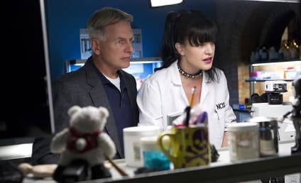 NCIS Season 12 Episode 7 Review: The Searchers