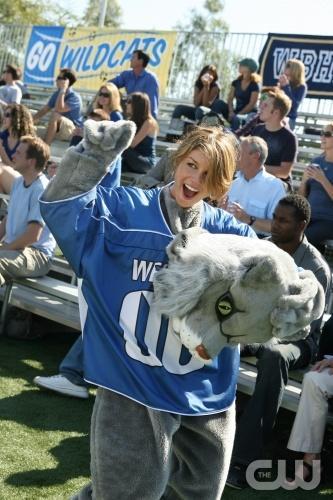 Annie the Wildcat