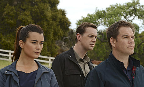 Tony, Ziva and Tim Photo