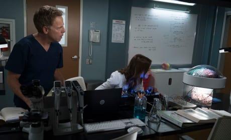 Let it Glow - Grey's Anatomy Season 15 Episode 1