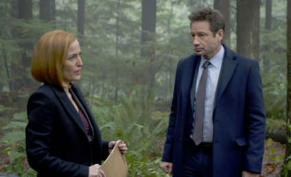 The X-Files: Canceled?