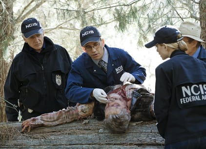 Watch NCIS Season 13 Episode 7 Online