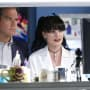 What Has Abby Found? - NCIS Season 12 Episode 8