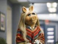 The Muppets Season 1 Episode 11