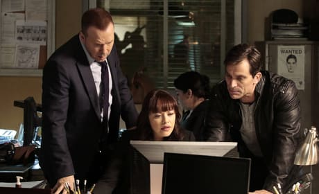 An Old Love - Blue Bloods