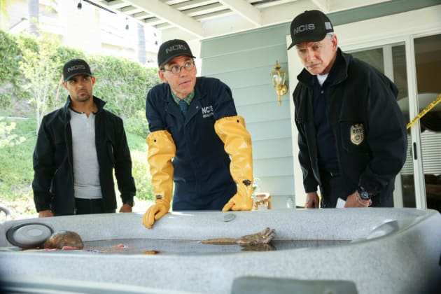 Body In a Hot Tub - NCIS