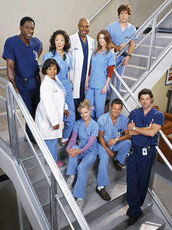 The Grey's Anatomy Cast