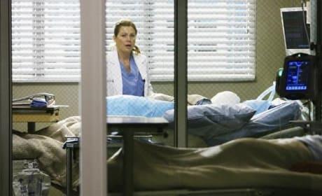 Dr. Meredith Grey Pic