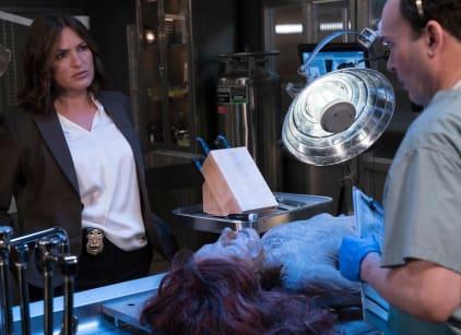 Watch Law & Order: SVU Season 17 Episode 1 Online